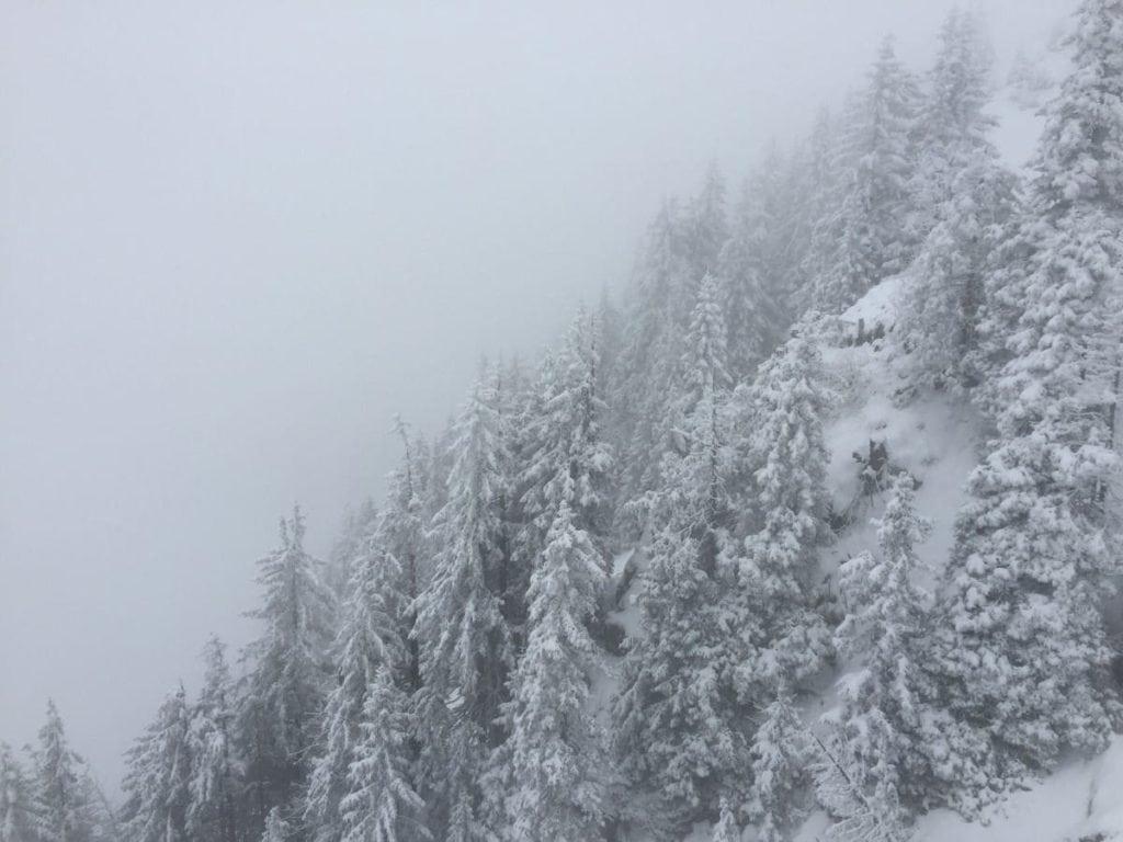 ski_printemps_2