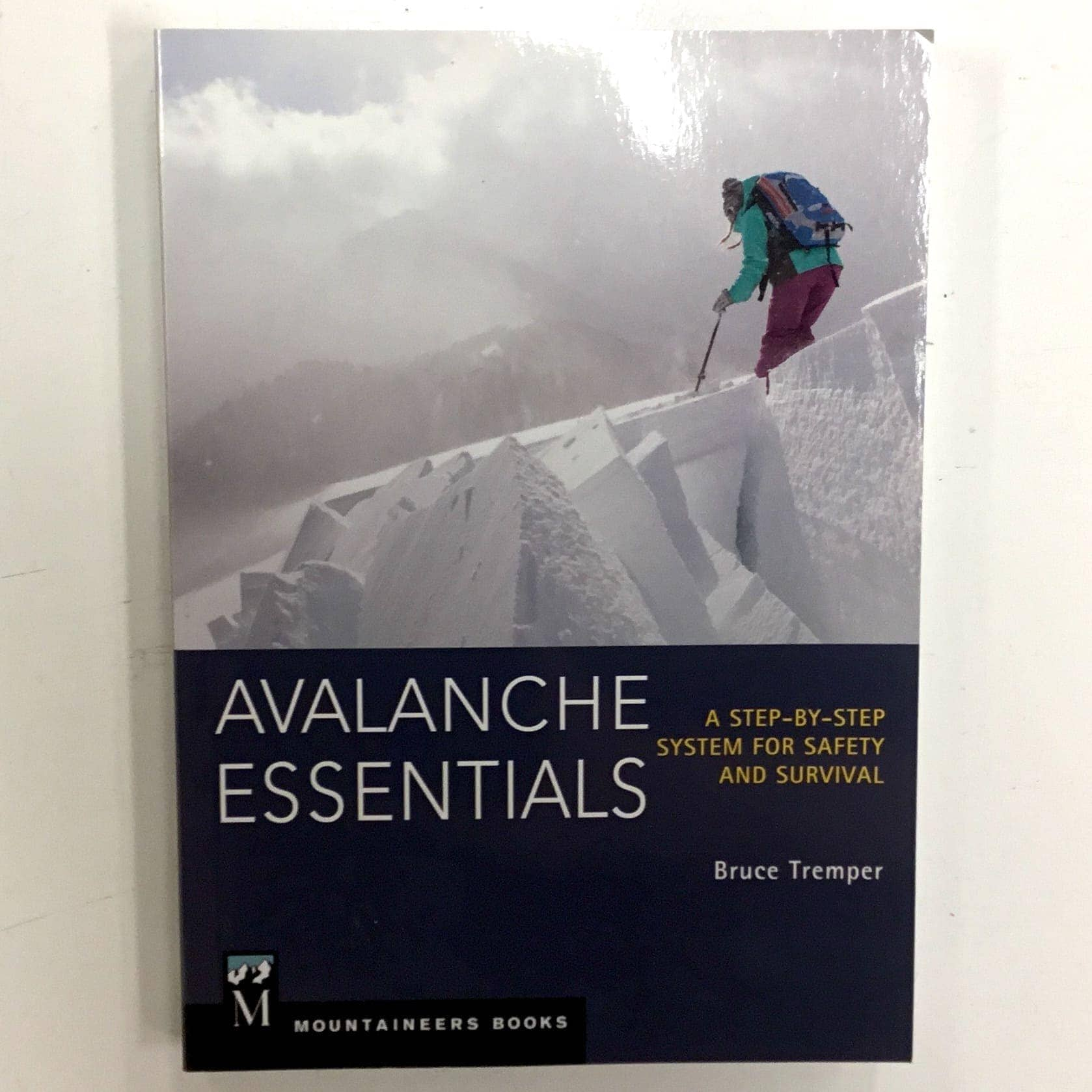 avalanche essentials  Avalanche Essentials - Avalanche Québec